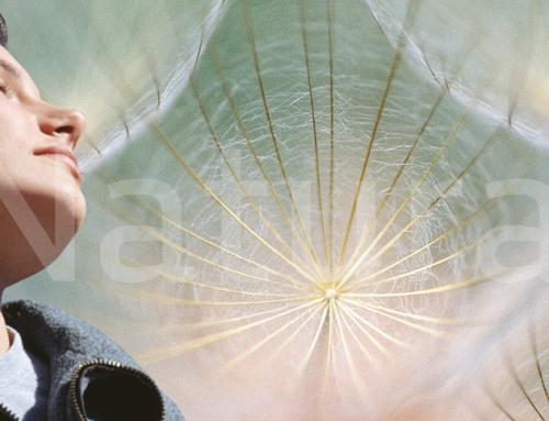 """Cómo ser un emprendedor espiritual con """"Luz Pura"""""""